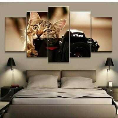 Cat And Camera - 5 Panel Canvas Print Wall Art Set