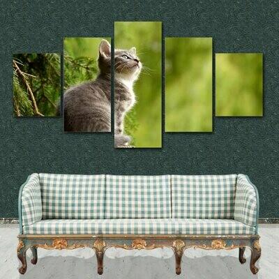 Cute Animal Kitty Cat Wondering - 5 Panel Canvas Print Wall Art Set