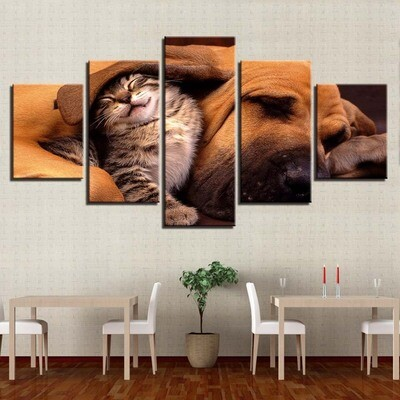 Lovely Cat And Dog Sleeping - 5 Panel Canvas Print Wall Art Set