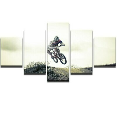 Bicycle Jump Mountain - 5 Panel Canvas Print Wall Art Set