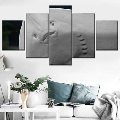 Animal Manta Ray Multi Canvas Print Wall Art