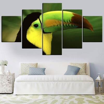 Animal Toucan Multi Canvas Print Wall Art