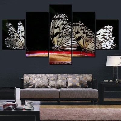 Animal White Butterfly Multi Canvas Print Wall Art