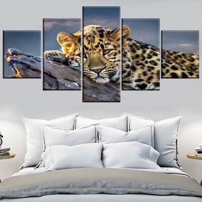 Big Cat Leopard Close-Up Multi Canvas Print Wall Art