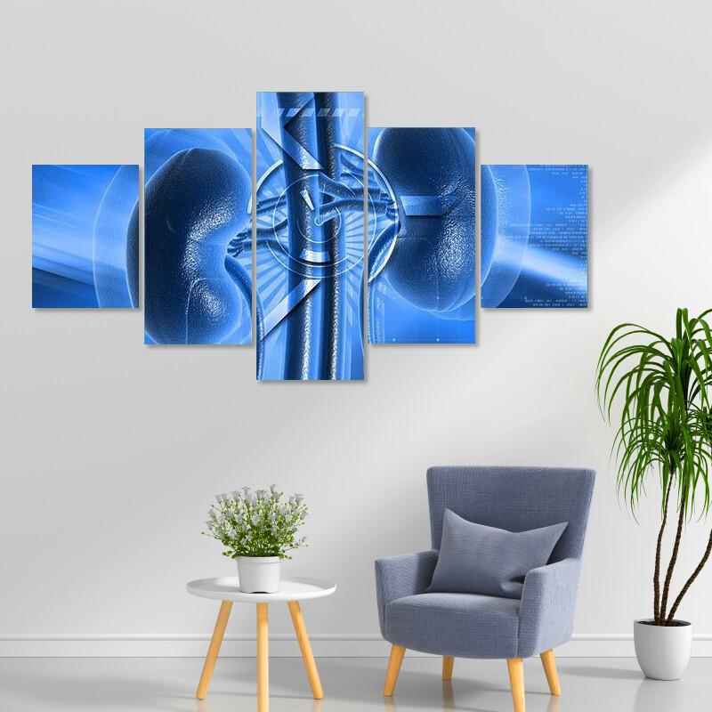 Illustration Of Kidney Multi Canvas Print Wall Art