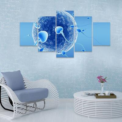 Spermatozoids And Human Egg Multi Canvas Print Wall Art