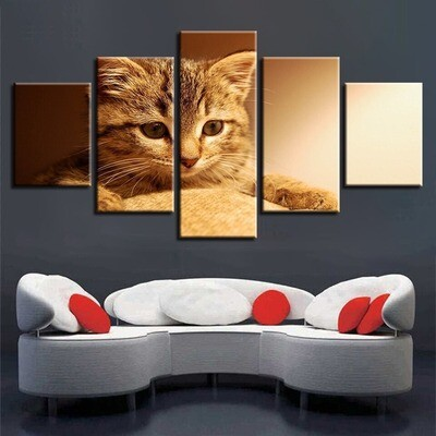 Lovely Cats - 5 Panel Canvas Print Wall Art Set