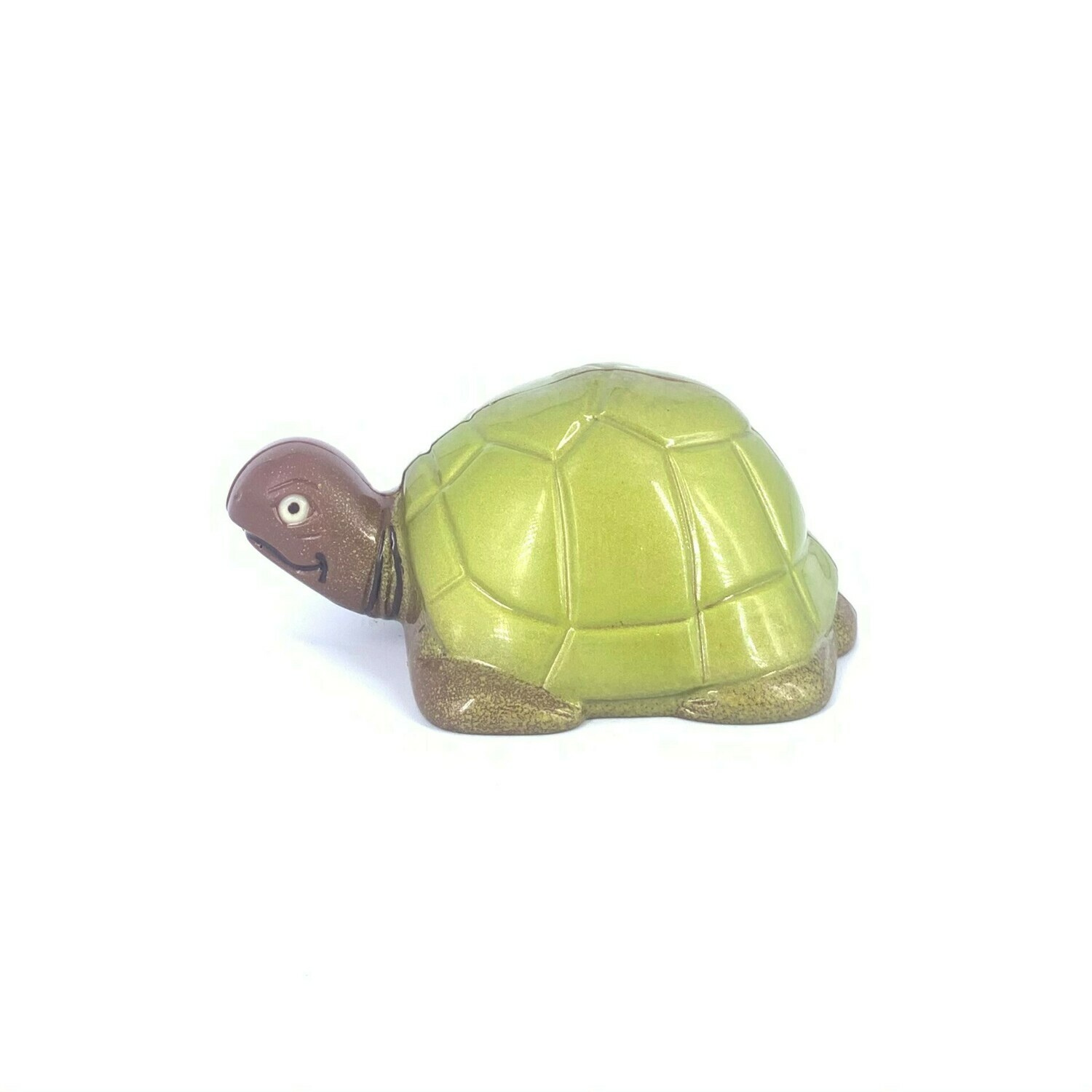 Tortue - SS.N