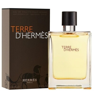 Terre D'Hermes by Hermes 100ml EDT