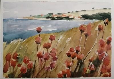 Dünenblumen, Original Aquarell Zeichnung 26x36cm