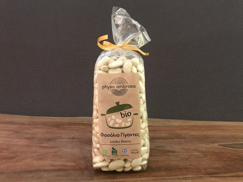Physis Ambrosia Jumbo Beans