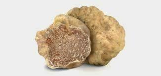 Truffle White Alba - 1/2 Pound