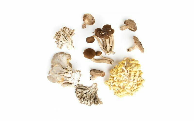 Foraged & Found Wild Mix Dried Mushrooms