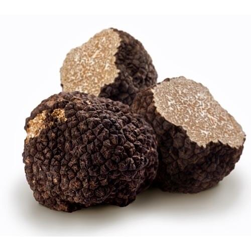 Truffle Black Burgundy