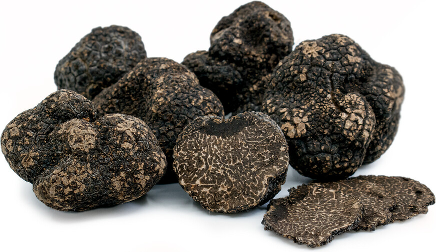 Truffle Black Winter