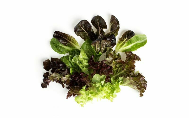 Little Leaf Organic Mesclun (Spring Mix) - 1/2 Pound