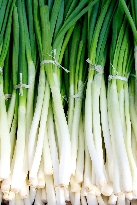 Onion, Scallions (bu)
