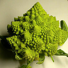 Broccoli, Romanesco  - 1/2 Pound