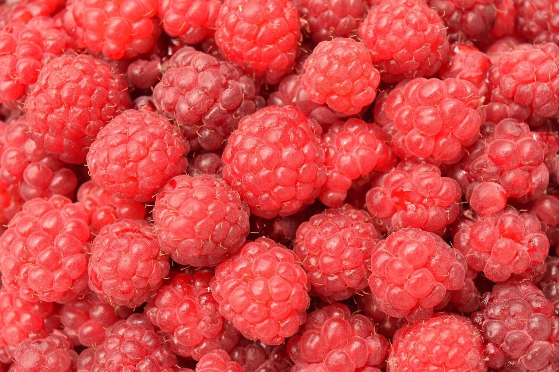 Berry, Raspberry (1/2pt)