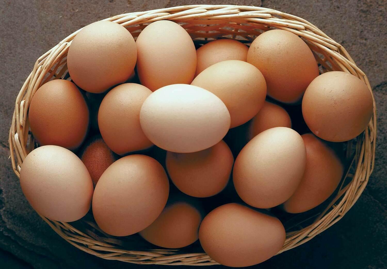Feather Brook Eggs (dozen)