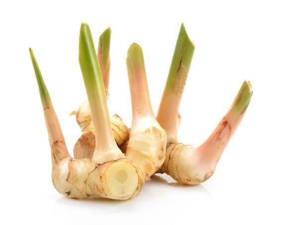 Fresh Organic Galangal - 1/2 pound
