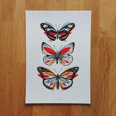 3 Papillons