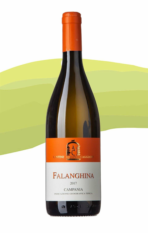 Falanghina 2017 Antonio Caggiano