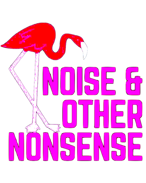 NOISE & OTHER NONSENSE