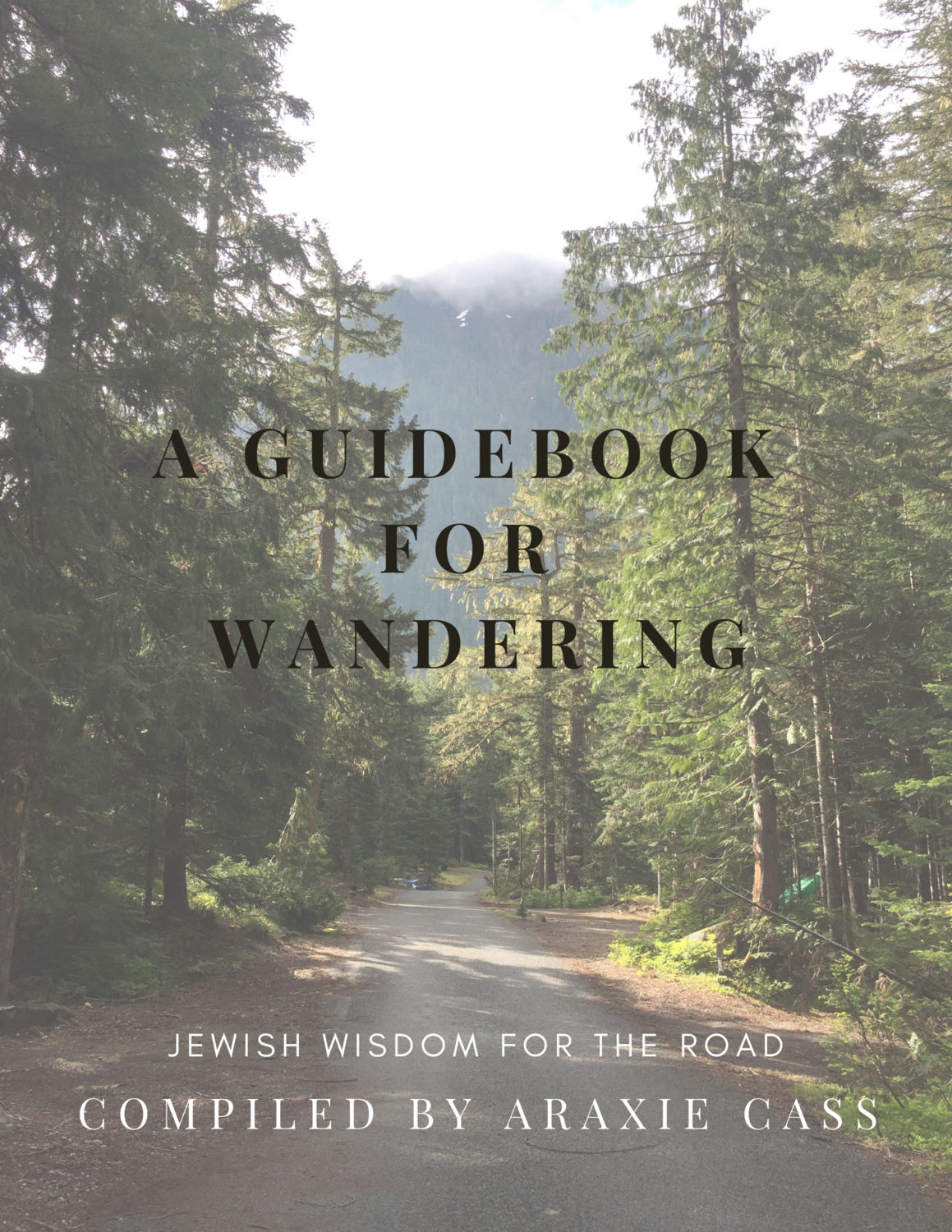 A Guidebook for Wandering