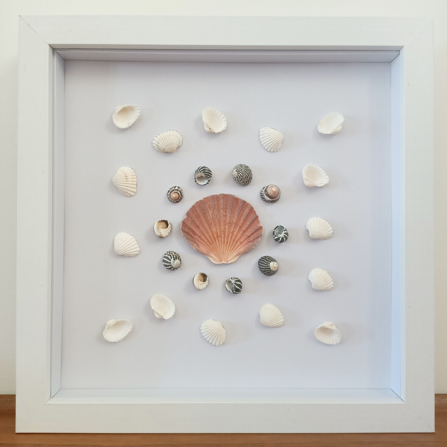 SCALLOP SHELL FRAME