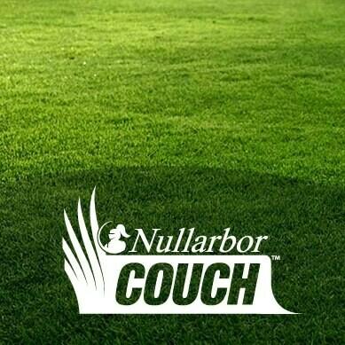 Nullarbor Couch  [Per SqM]