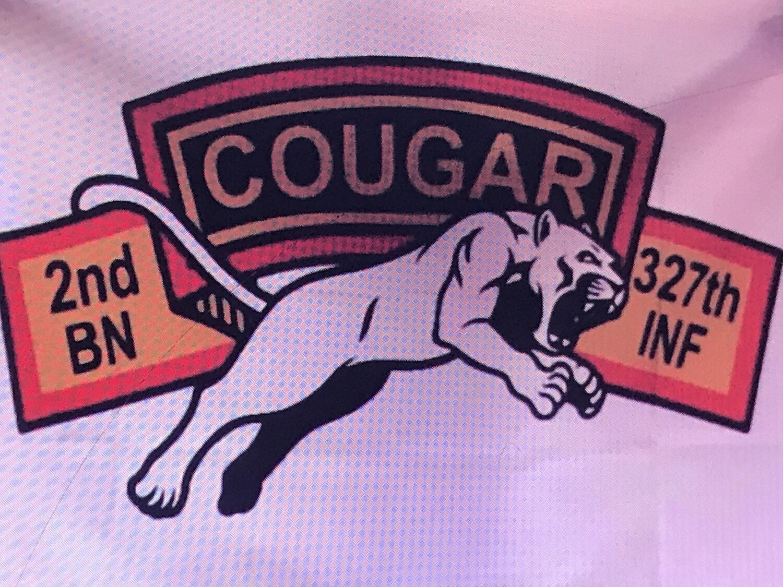 Cougar Company Flag