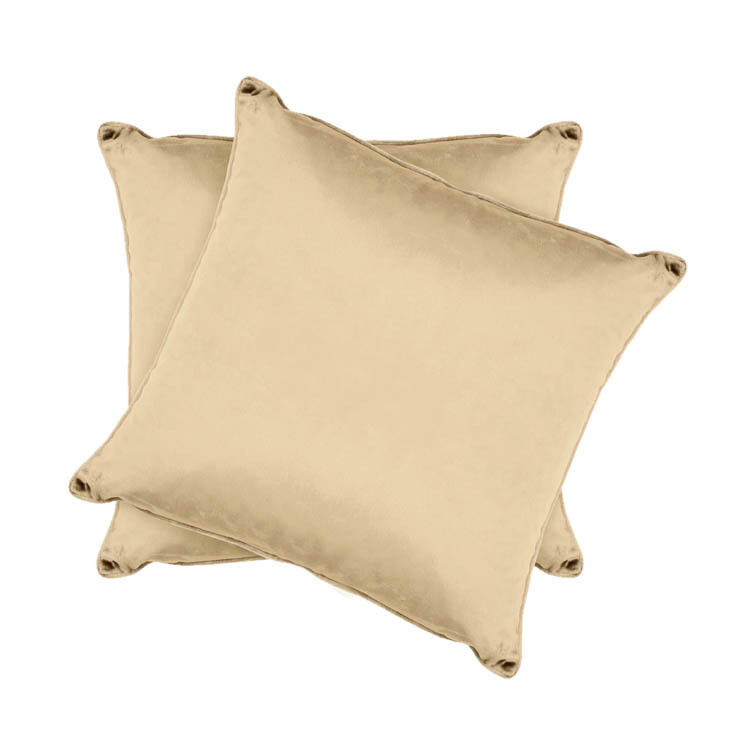 Champagne Velvet Pillow