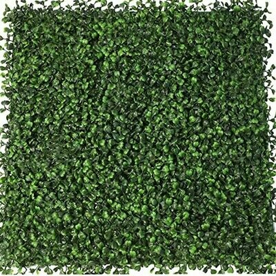 Boxwood Hedge Wall - Replacement Greenery