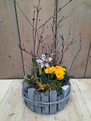 Frühlingsblüher im Holzkorb