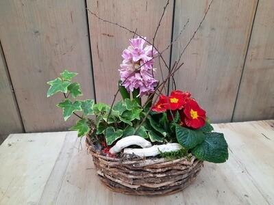 Frühlingskörberl klein