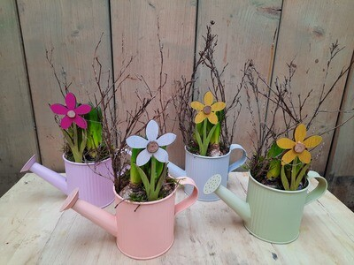 Gießkanne mit Frühlingsblühern