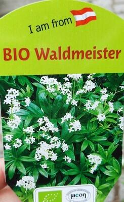 Waldmeister BIO