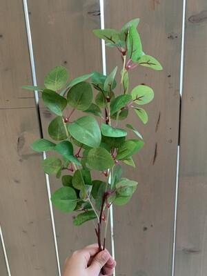 Eukalyptus grün aus Seide