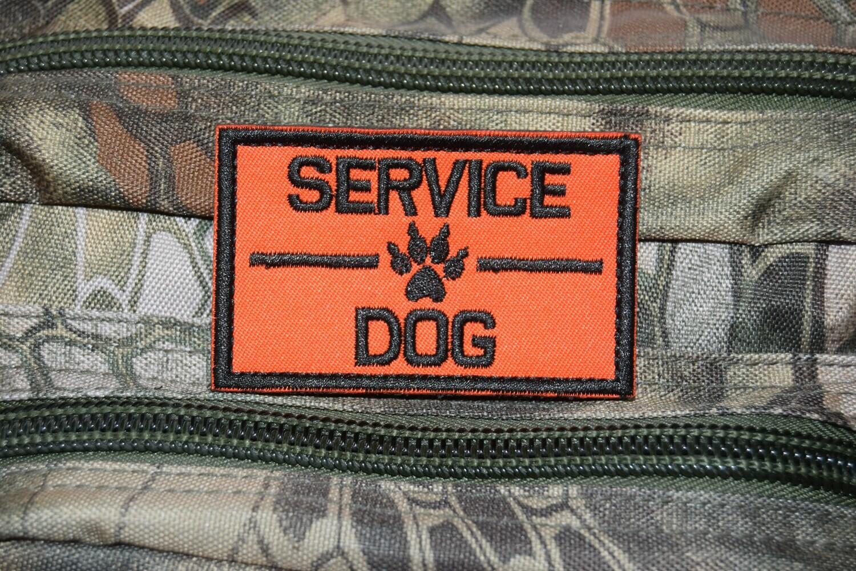 Patch SERVICE DOG avec scratch au dos
