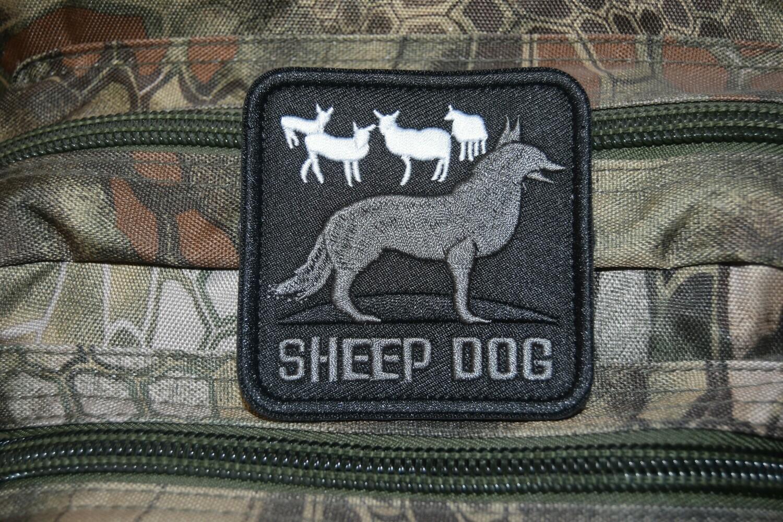 Patch sheepdog SHEEP DOG chien de berger