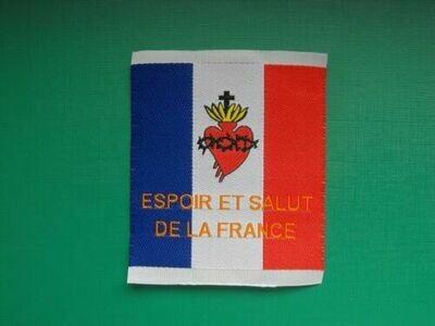 Insigne drapeau Français Espoir et Salut de la France
