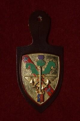 Insigne militaire Bureau du Service National NANCY