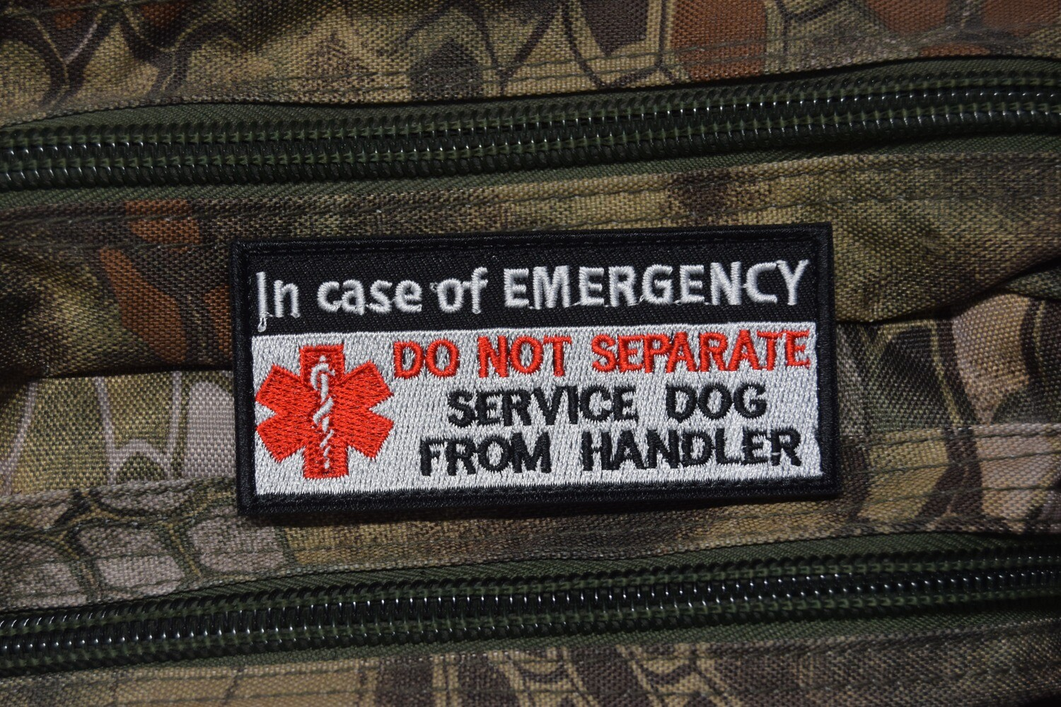 Patch SERVICE DOG DO NOT SEPARATE DOG FROM HANDLER avec scratch au dos