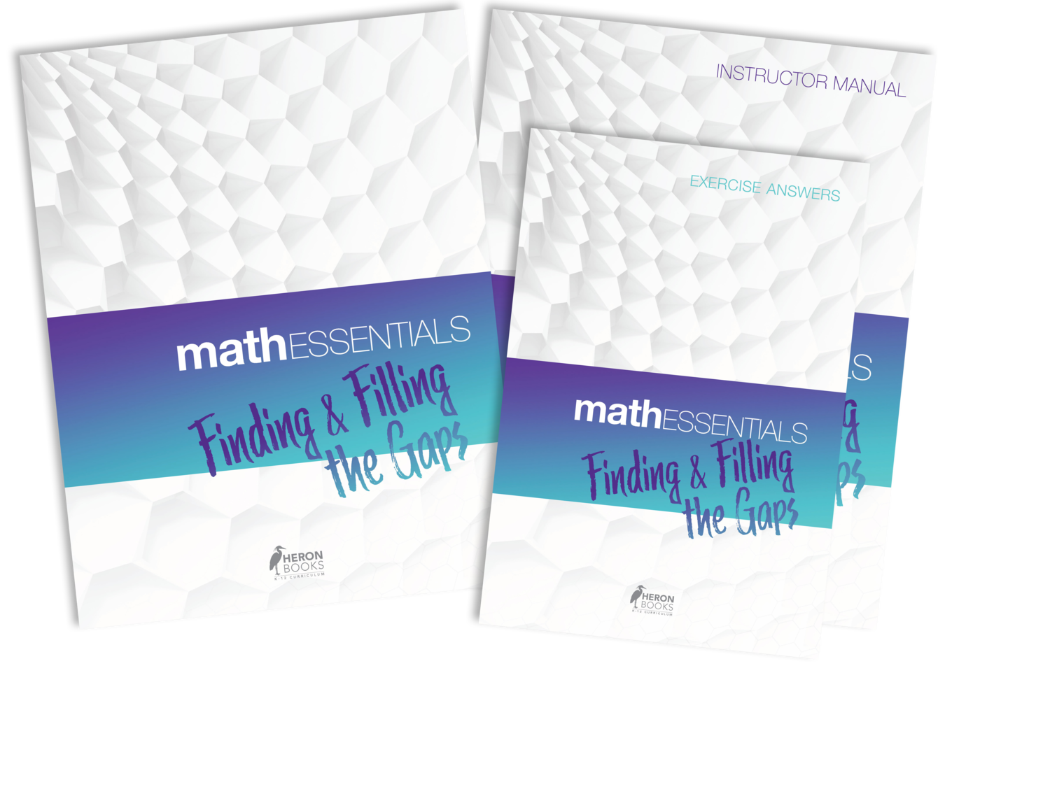 Math Essentials - Finding and Filling the Gaps (the complete package)