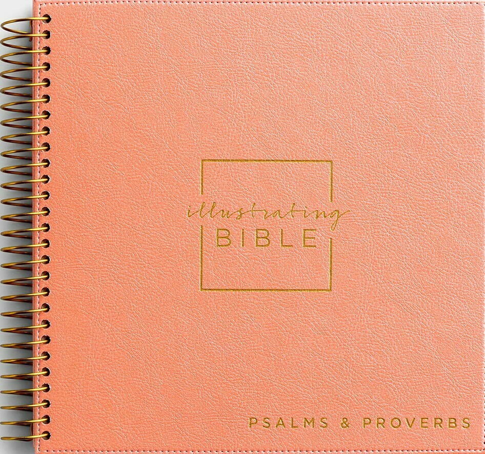 Illustrating Bible- Psalms and Proverbs