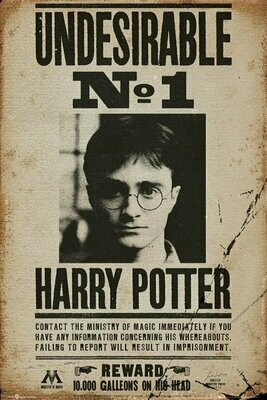Harry Potter Maxi Poster Undesirable