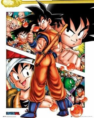 Dragon Ball Mini Poster Collage