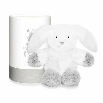 Boxed Bunny