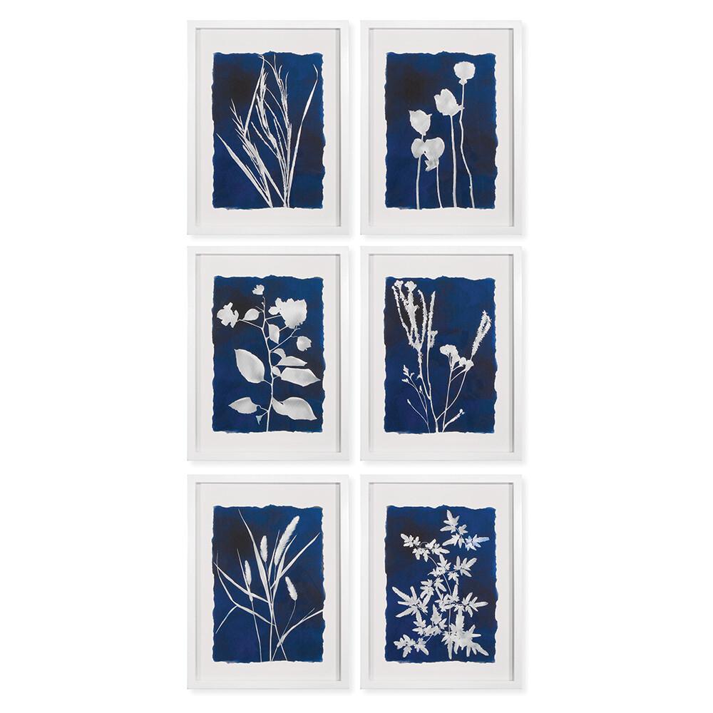 Wildflower Cyano Print